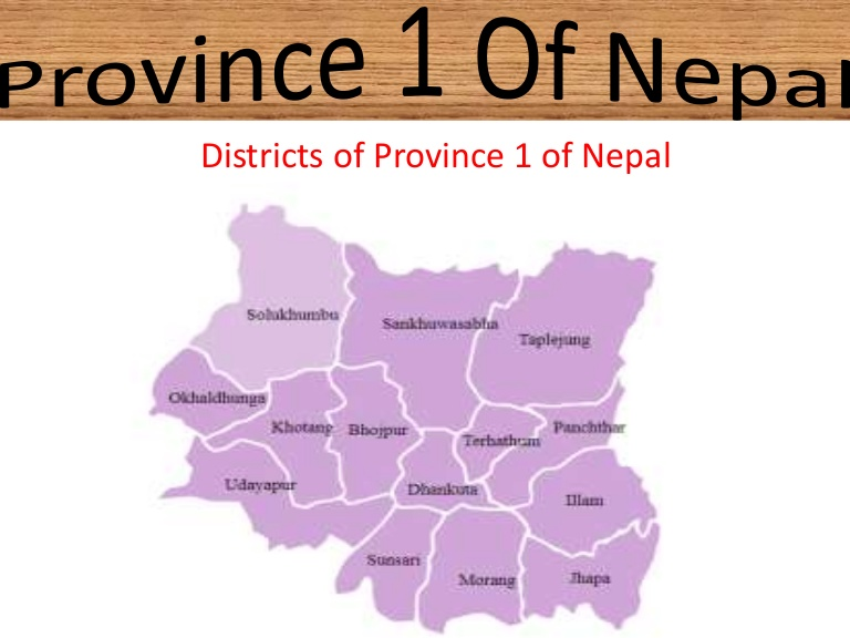 Provincial government successful in creating hope: Province 1 CM Rai